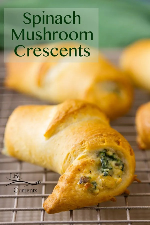 Spinach Mushroom Crescents - Great as an appetizer or side, or make a bigger pouch with the crescents, and serve them as a great vegetarian main course.