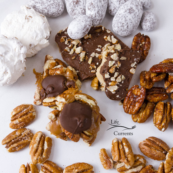 candies on a white plate. Candies include: Dark Chocolate Pecan Toffee, Chocolate Toffee Pecans, Dark Chocolate Caramillican, Pecan Divinity, Sweet & Spicy Pecans, and Roasted & Salted Pecans