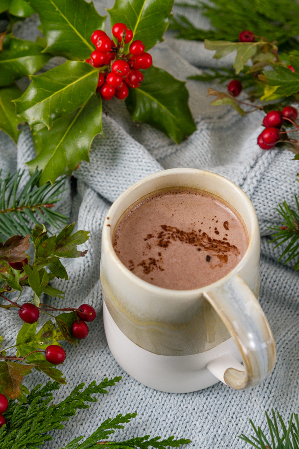 a mug of hot cocoa with holly and evergreens
