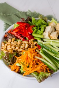 Asian Fusion Bowl salad with greens, cucmbers, carrots, tofu, and more