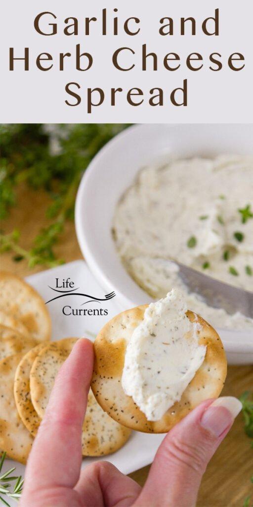 I'm holding a cracker topped with Garlic and Herb Cheese Spread in front of a bowl full of spread and some crackers