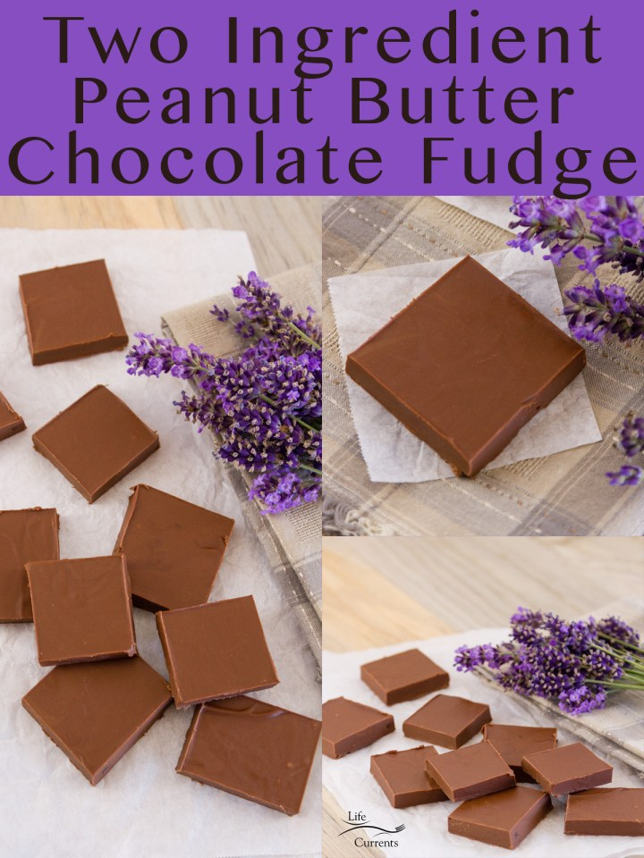 three image collage of Two Ingredient Peanut Butter Chocolate Fudge with title on top