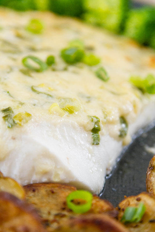 close up of baked halibut