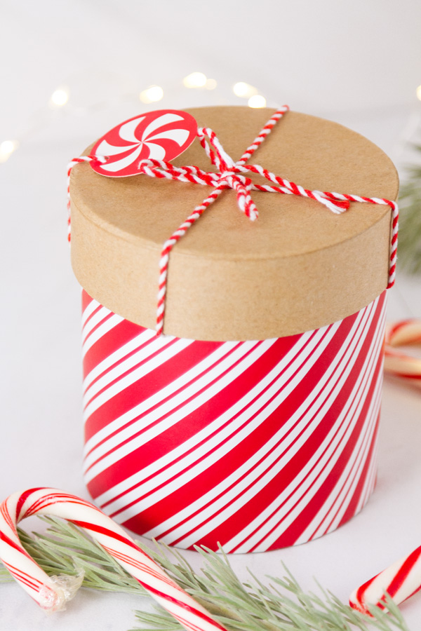 gift box with red and white peppermint stripes with candy canes, twinkle lights, and greenery around it