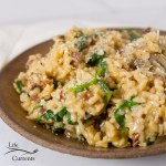 square crop of risotto