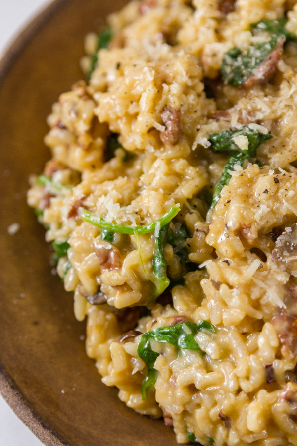 close up shot of mushrrom risotto