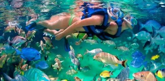 Snorkeling the Islands of Palawan