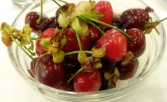 Delicious fresh sweet cherries for breakfast!