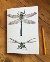 Dragonfly A5 Sketchbook
