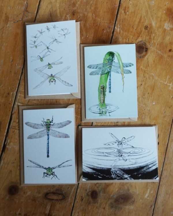 Dragonfly Art Cards