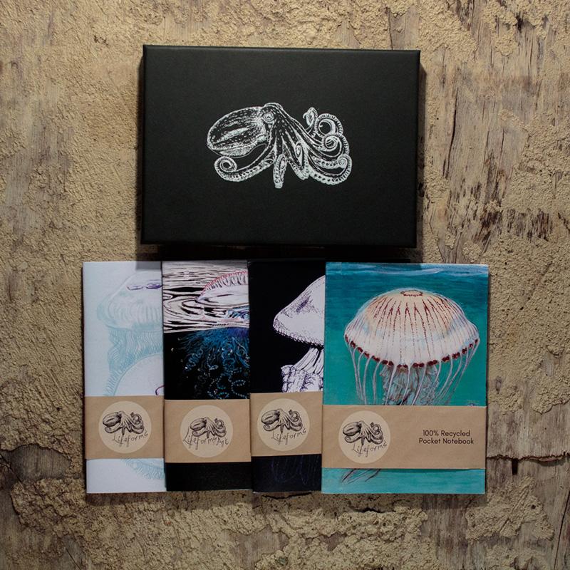 Cnidarians pocket notebook gift box.