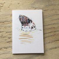 Grey Seal pocket notebook