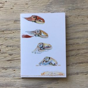 cuttlefish pocket notebook