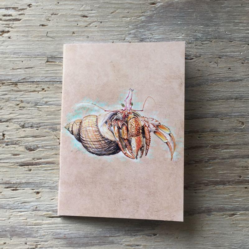 hermit crab pocket notebook