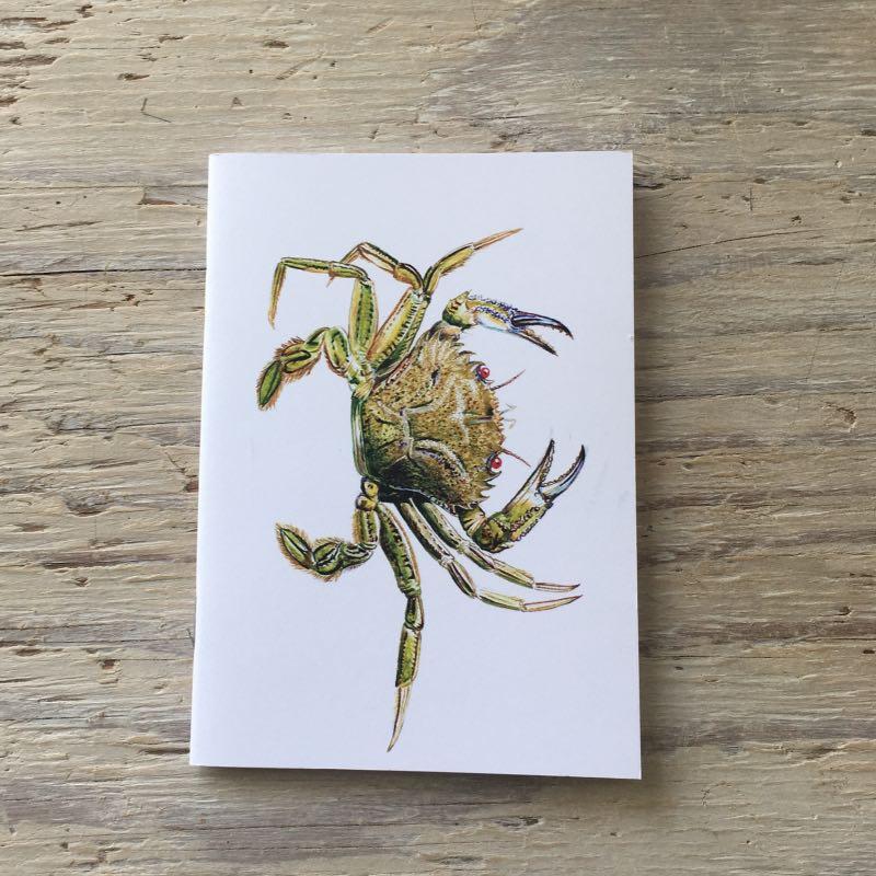 velvet swimming crab pocket notebook