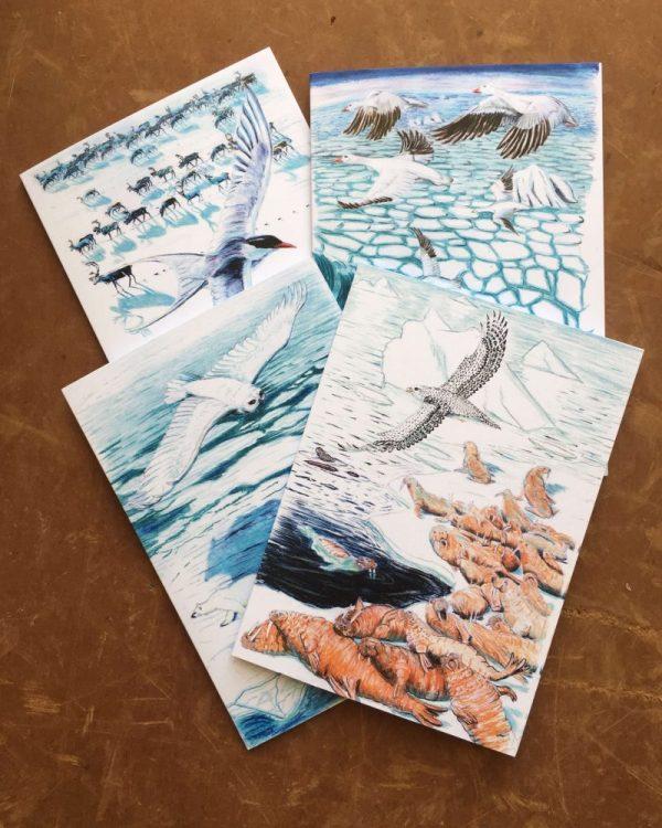 Northern Flights Art Cards