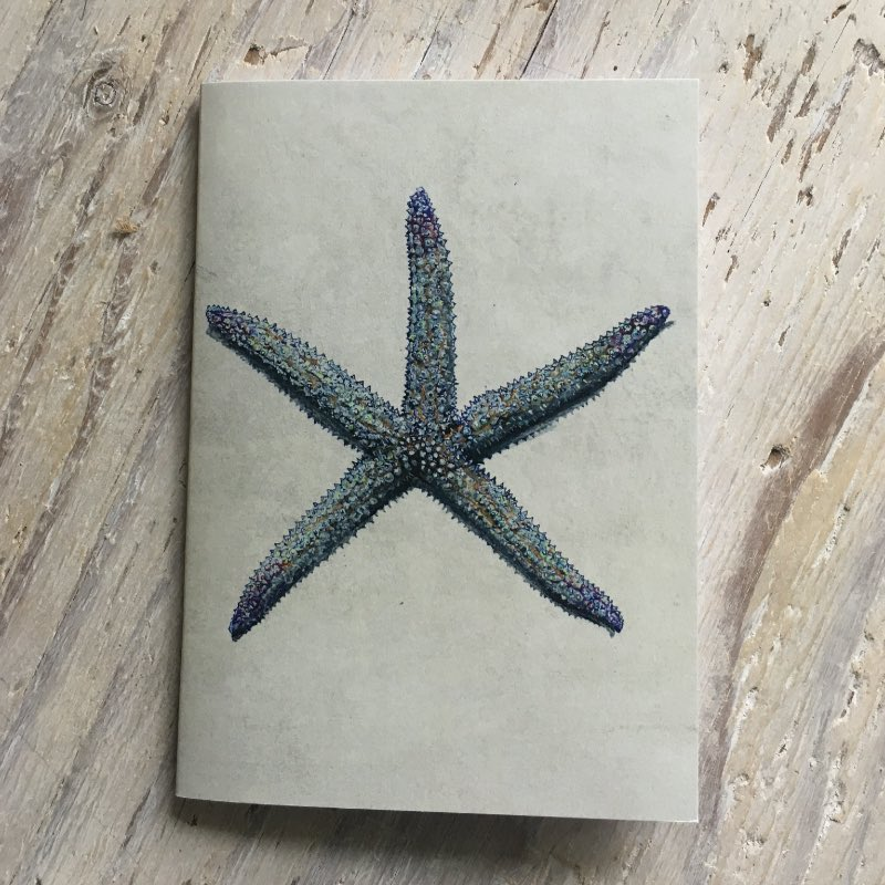Spiny Star Pocket Notebook