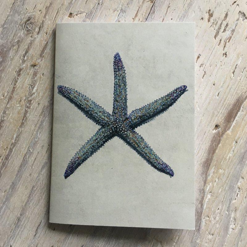 Spiny Star Pocket Notebook