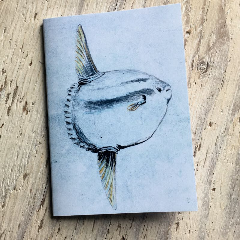 Sunfish Pocket Notebook