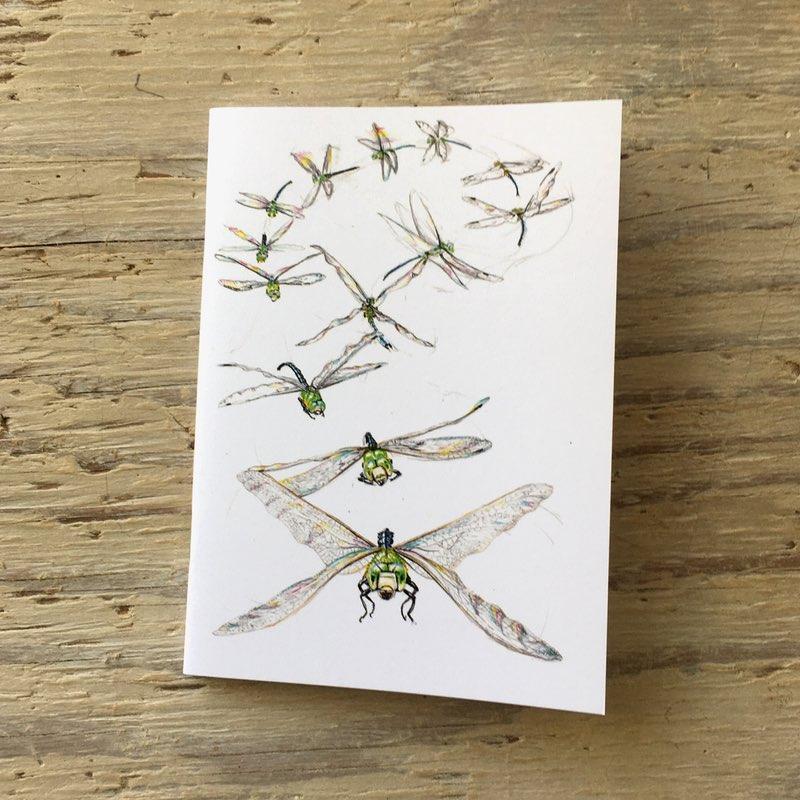 dragonfly flight pocket notebook