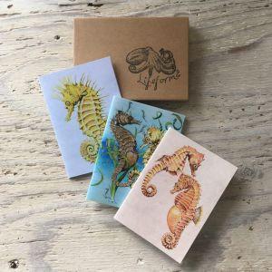 seahorse pocket notebook gift set