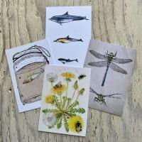 set of four postcards