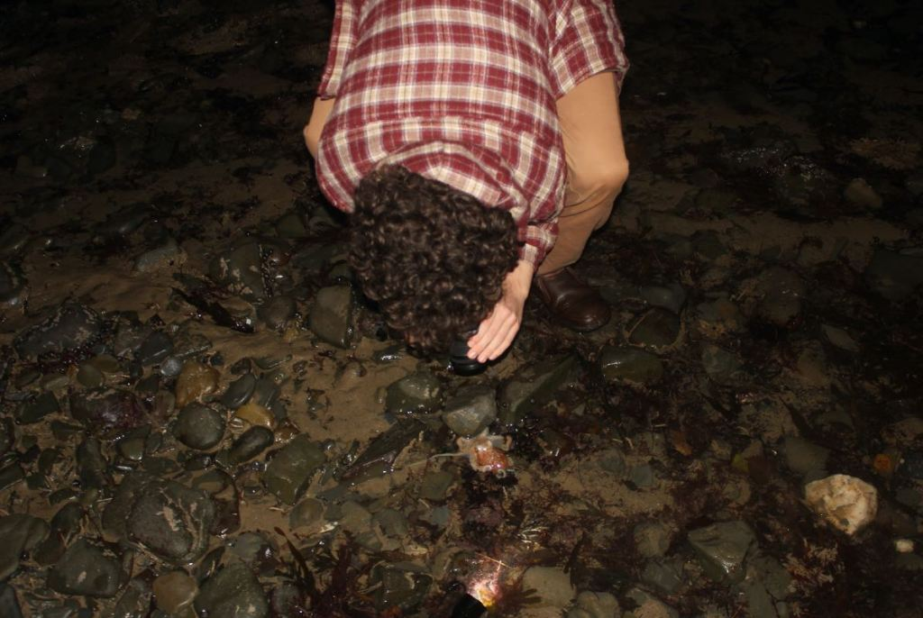 Ben photographs the washed up Octopus