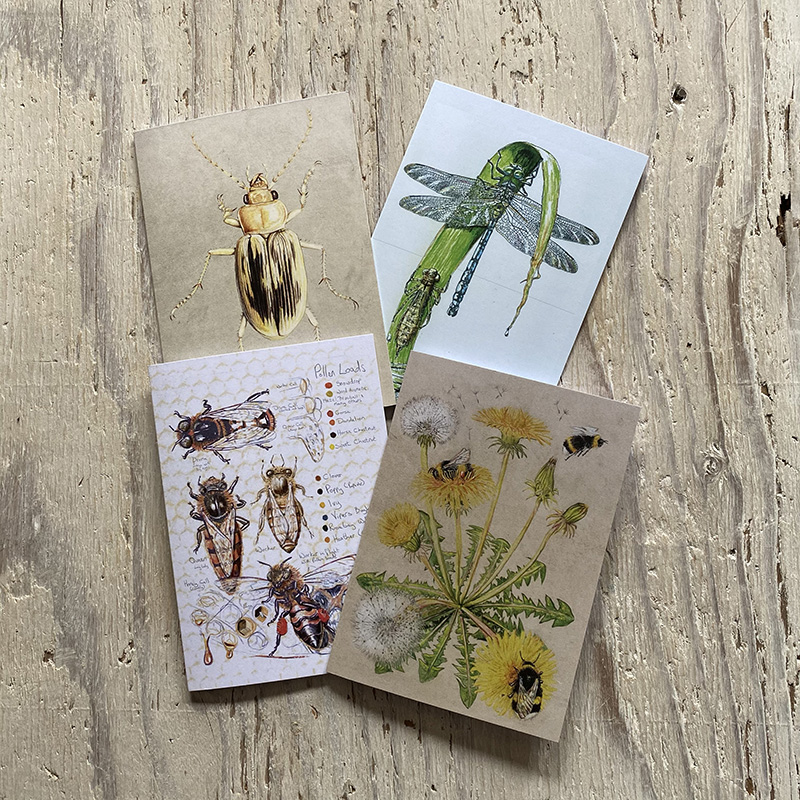 Insects Greetings Cards Set