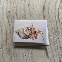 hermit crab greetings card