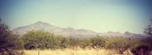 DesertPanorama1