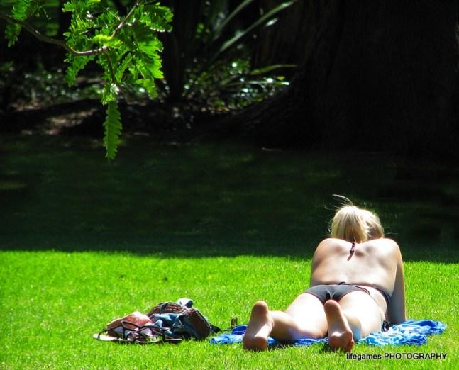 Sydney-132 girl sunbaking in the park