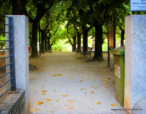 pictures-of-ITALY (139)
