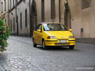 pictures-of-ITALY (88)