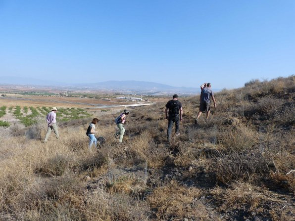 Participantes en la actividad observan las plantaciones de garbancillo de Tallante en el Alto de Las Cutandas