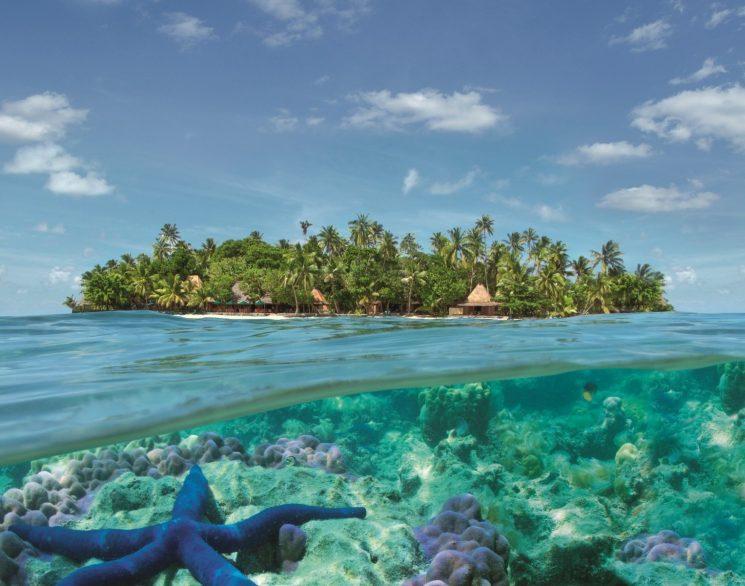 фишки дня, Вануату