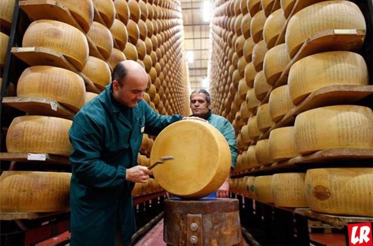 фишки дня, день сыра, французский сыр, день сыра Франция