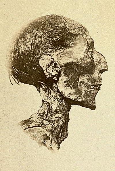 Мумия Рамзеса II, фараон, специи, перец
