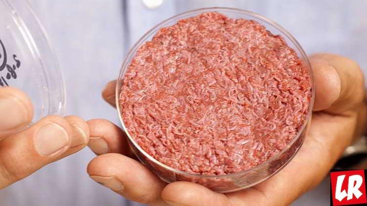 искусственное мясо, еда будущего