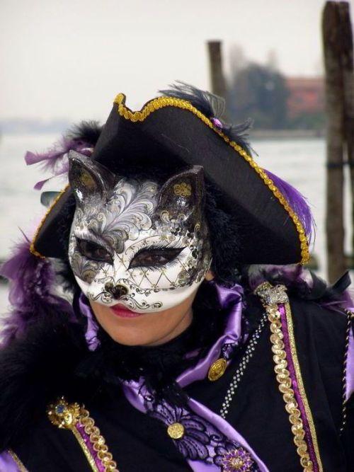 кот, Венеция, маска, Венецианский карнавал
