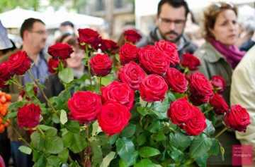 фишки дня, день книг, день влюбленных Испания