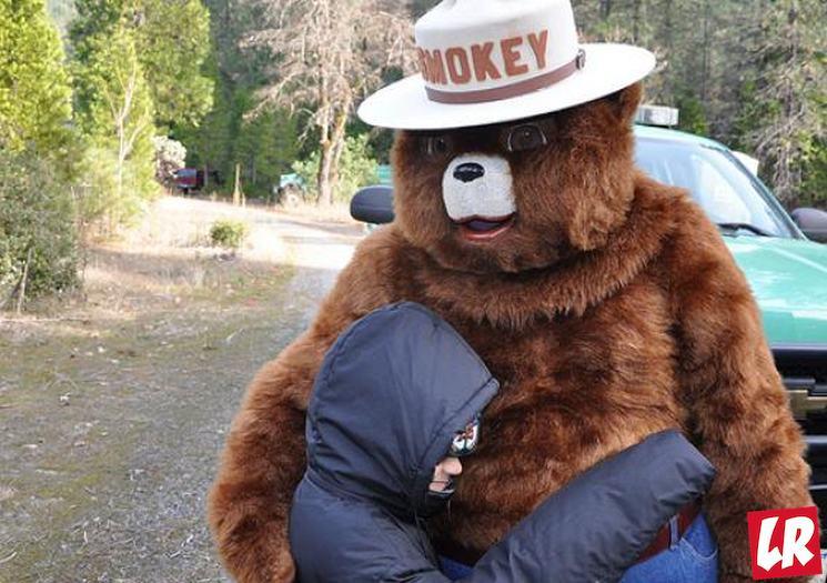фишки дня - 9 августа, день медведя Смоки