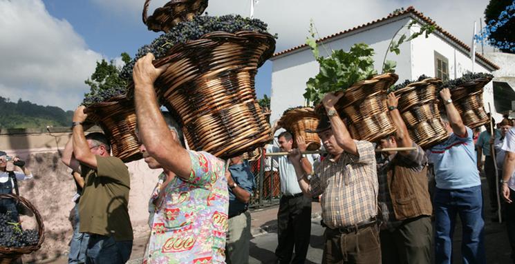 фишки дня - 25 августа, фестиваль вина Мадейра