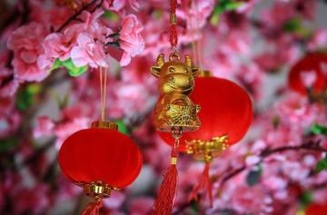 Китайский Новый год, декорации, год Быка