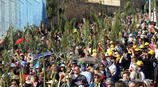 SON OF GOD: Palm Sunday