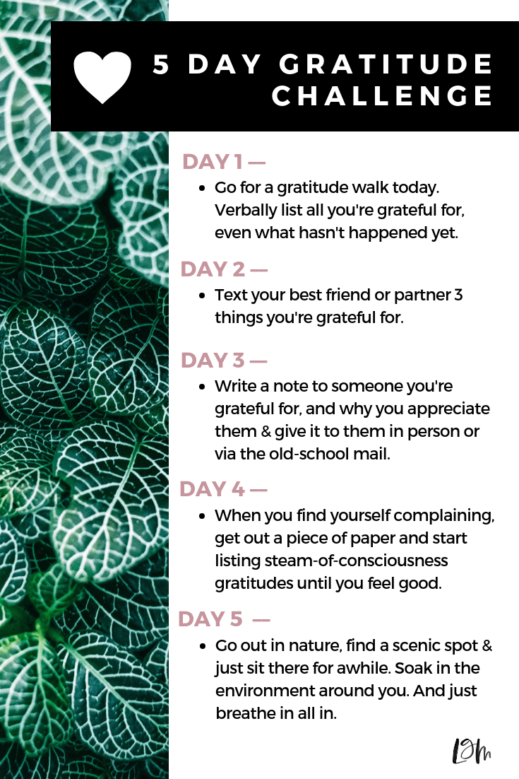 gratitude challenge with ideas for cultivating more thankfulness in your routine. how to be grateful with a partner, show more love to those around you daily. #gratitude