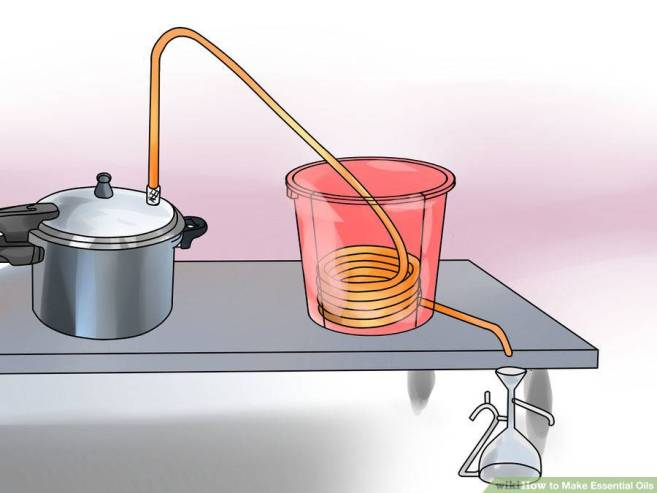 aid34326-900px-Make-Essential-Oils-Step-8-Version-4