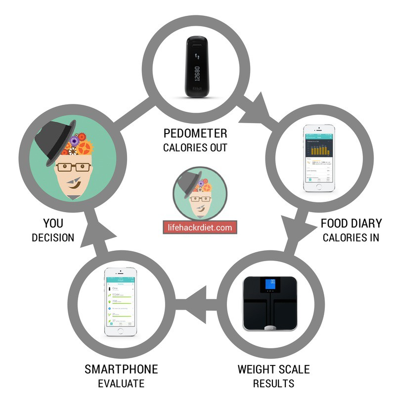 Lifehackr diet chart to lose weight