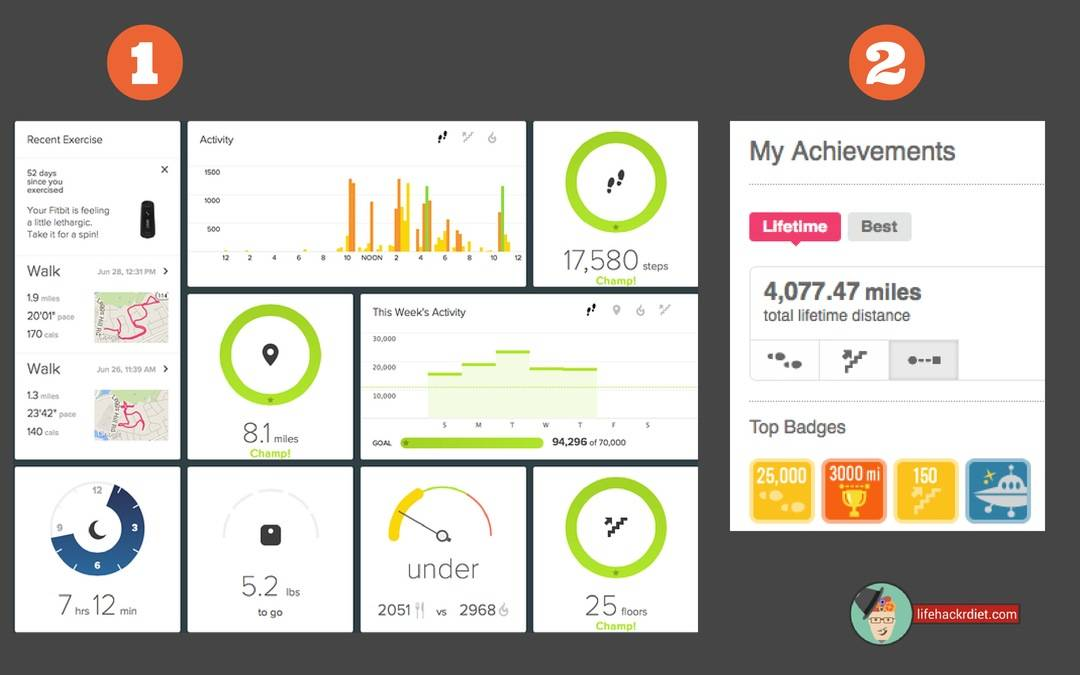 Kickstart Your Diet! Observe. See the patterns of your diet in the Fitbit web dashboard.