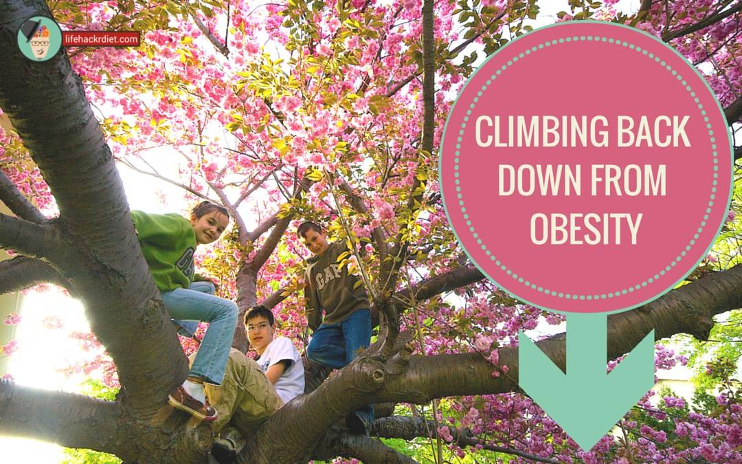climbing back down from obesity, opinion.