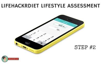 LifehackrDiet Lifestyle Assessment – Step 2